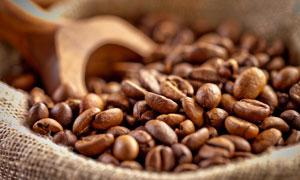 在麻袋里严选品质的咖啡豆高清图片