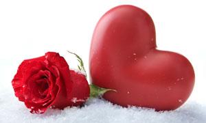 红色心形与玫瑰花特写摄影高清图片