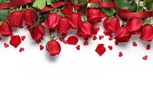 玫瑰花瓣与红色的桃心创意高清图片