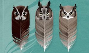 9款猫头鹰羽毛装饰PS笔刷
