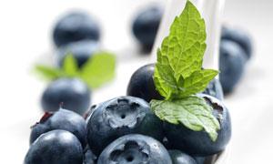 放在调羹里的蓝莓特写摄影高清图片