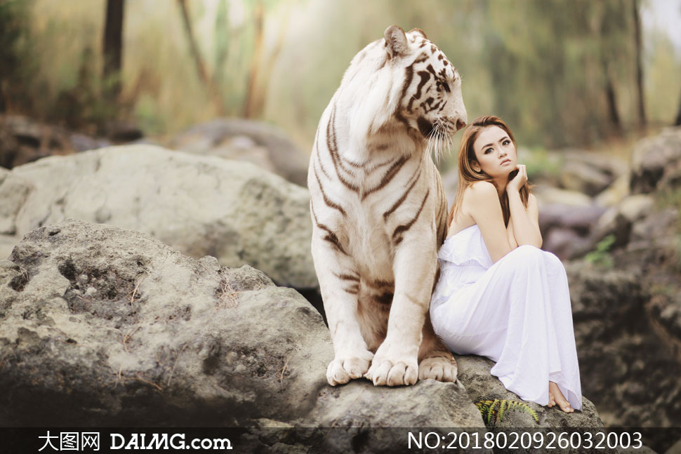 与老虎一起坐在石头的美女高清图片