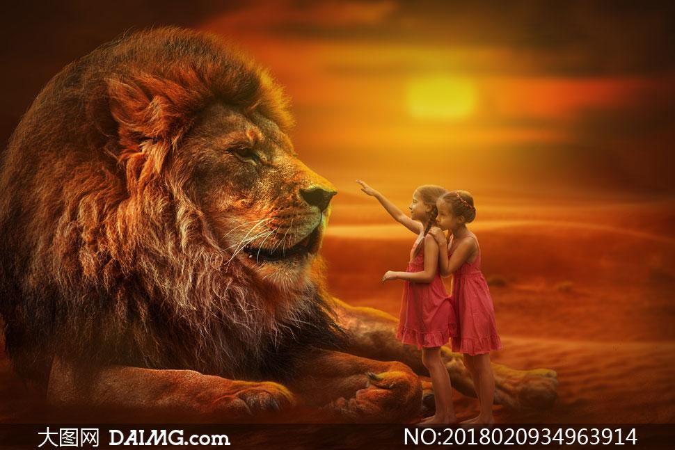 站在狮子面前的小女孩摄影高清图片