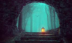 魔幻的森林场景合成PS教程素材