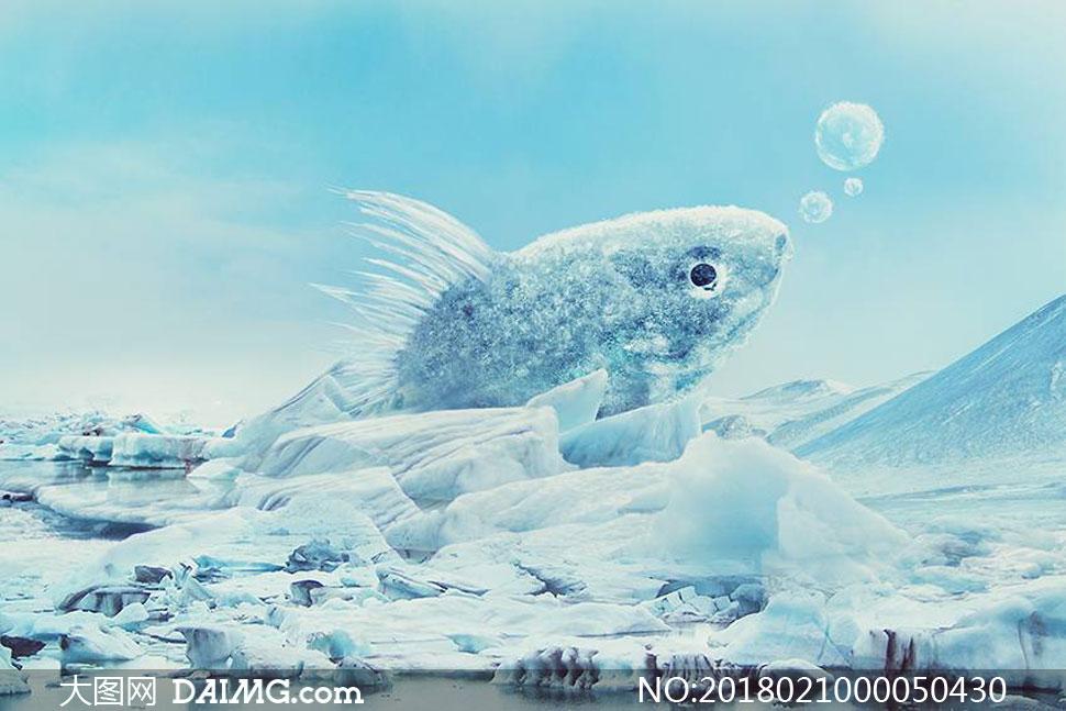 夏季冰冻特效的金鱼PS教程素材