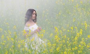 油菜花丛中的秀发美女摄影高清图片