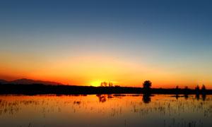 夕阳下的美丽湿地摄影图片