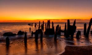 海边木桩黄昏景观摄影图片