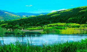 山间绿色植被和河流摄影图片