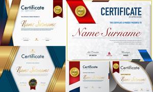 多种多样的授权书与证书等素材V102
