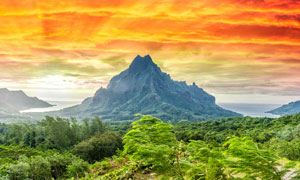 大山树丛与火烧云风光摄影高清图片