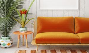 室内植物与空白效果装饰画高清图片