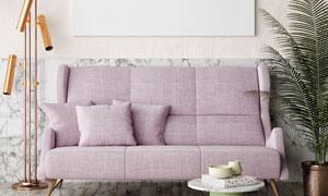 沙发植物与墙壁上的装饰画高清图片