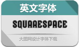 Squarespace系列四款英文字体