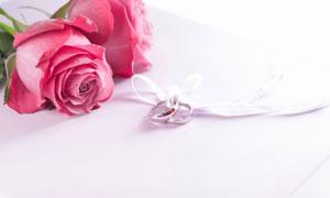 粉红玫瑰与系在一起的戒指高清图片
