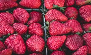摆出来售卖的新鲜草莓摄影高清图片