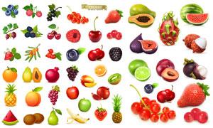 火龙果等高度逼真水果创意矢量素材