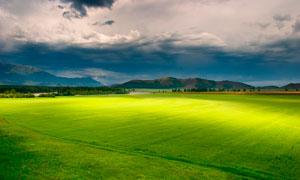 乌云下的绿色草地摄影图片