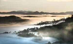 清晨山顶美丽的云雾摄影图片