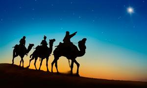 沙漠中旅行的驼队剪影摄影图片