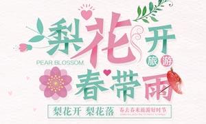 春季梨花节宣传海报设计PSD素材