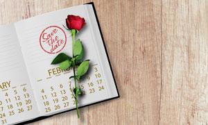 桌面上的日历与玫瑰花摄影高清图片