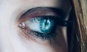 一只蓝色眼睛紧紧特写摄影高清图片