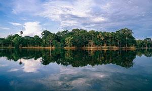 蓝天白云与湖边茂密的树林高清图片