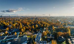 高绿化率城市风光鸟瞰摄影高清图片