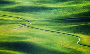 蜿蜒在农场的小溪风光摄影高清图片