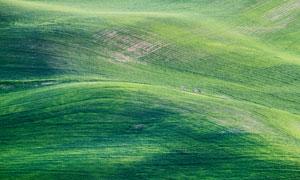 连绵起伏山地环境农田摄影高清图片