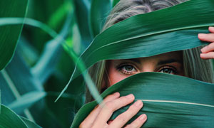 被玉米叶遮住脸的美女摄影高清图片