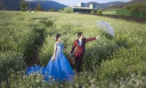 花丛中的幸福情侣婚纱摄影高清图片