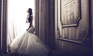 披肩卷发新娘人物婚纱摄影高清图片