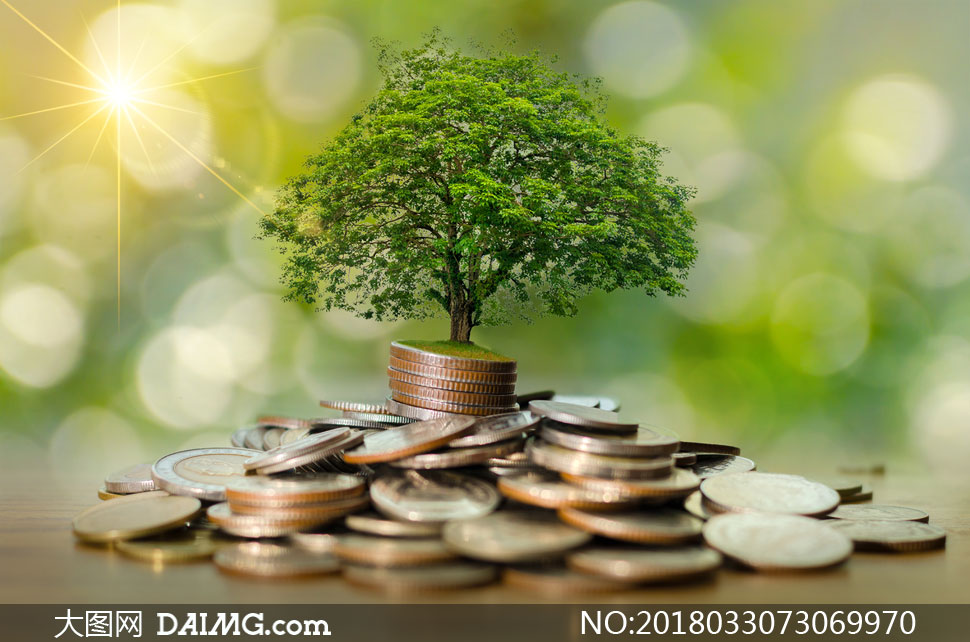 玻璃存钱罐上长出的小幼苗高清图片         长出小树苗的硬币创意图片