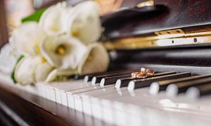 钢琴键上的鲜花与戒指摄影高清图片