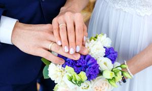 佩戴着戒指的新娘新郎摄影高清图片