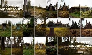30款森林照片古典怀旧效果LR预设