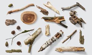 松果与形态各异的木头PSD分层素材
