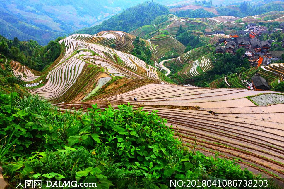 关 键 词: 高清图片大图素材摄影自然风景风光鸟瞰俯瞰农田田地农业