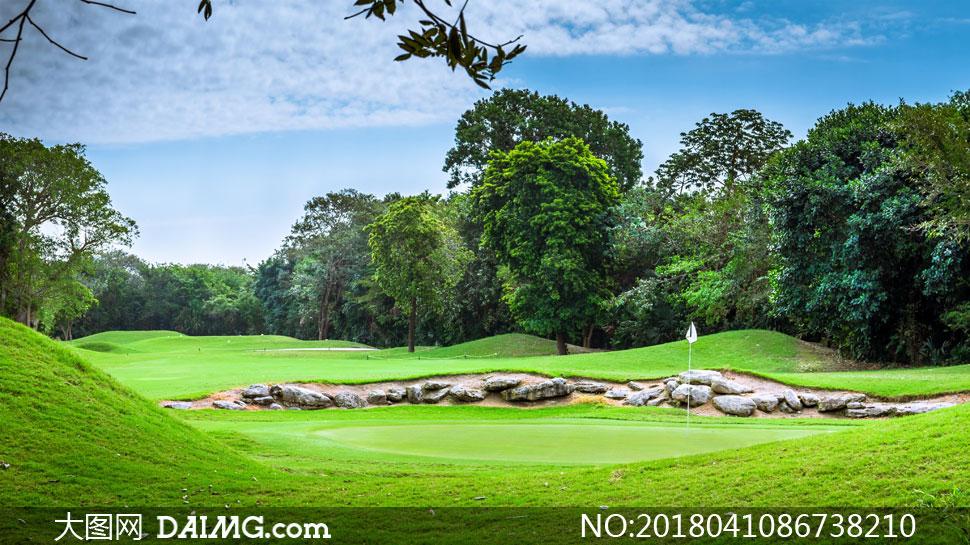 大图首页 高清图片 自然风景 > 素材信息          小树与高尔夫球场