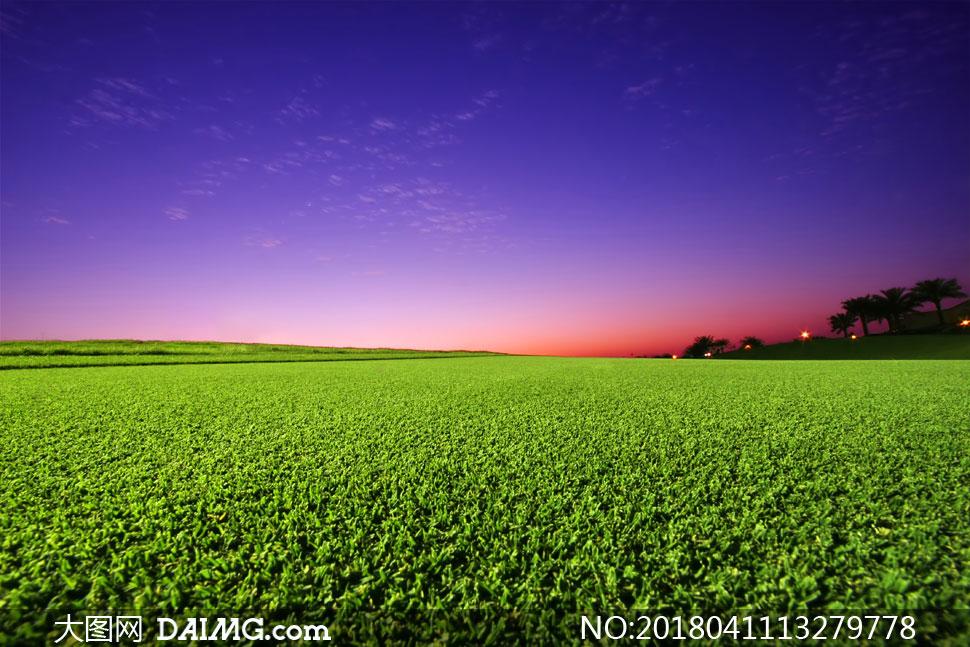 天空白云树木草地风景摄影高清图片 素材