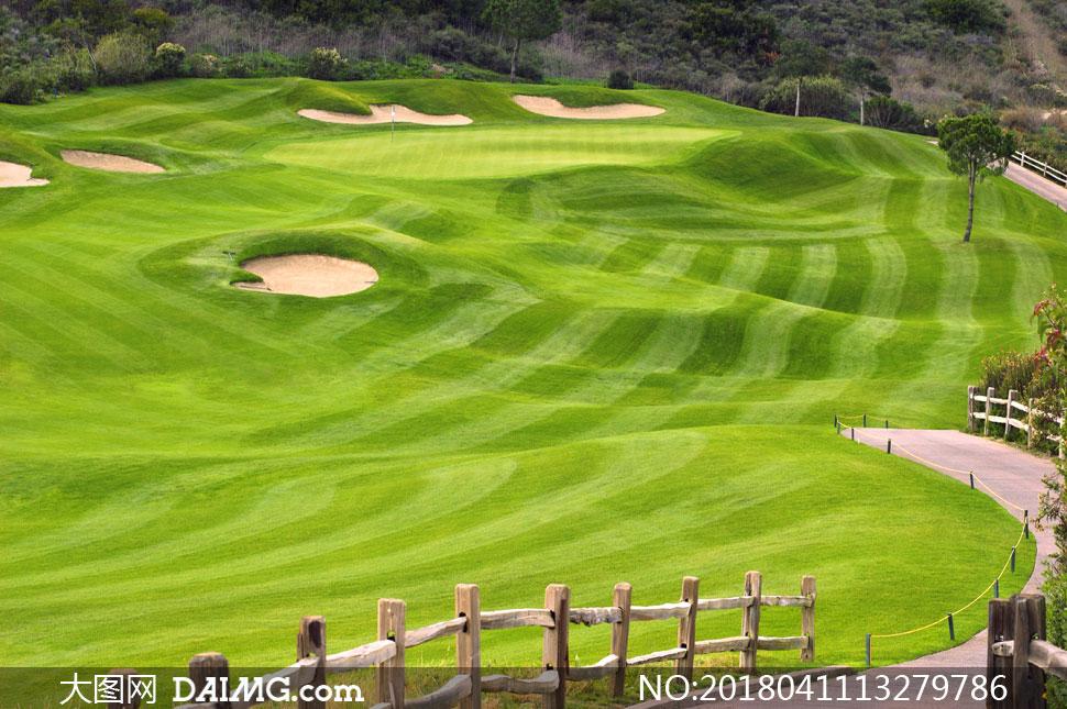 高清图片大图素材摄影自然风景风光树木草地草坪高尔夫球场草皮小树
