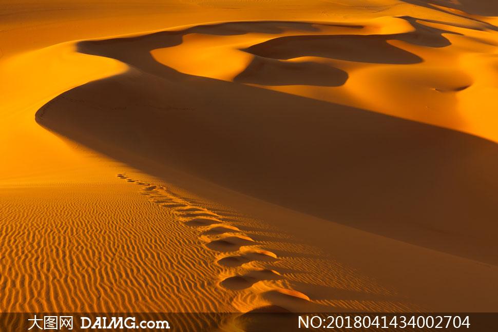 键 词: 高清图片大图素材摄影自然风景风光沙漠大漠黄沙沙丘黄昏傍晚