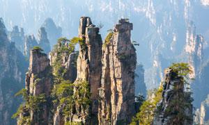 砂岩峰林地貌景观风光摄影 澳门线上必赢赌场