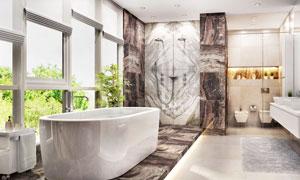 浴室淋浴设施与浴缸浴室柜高清图片