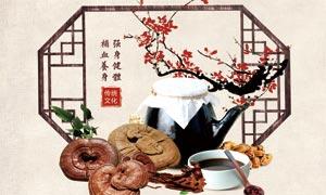 中国风中药养生海报设计矢量素材