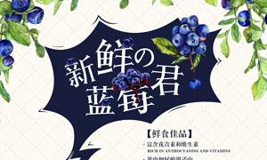 新鲜蓝莓水果宣传海报PSD素材