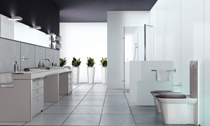 卫生间内景与盆栽植物渲染效果图片