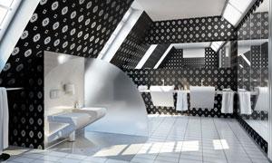 宽敞的洗手间内景陈设摄影高清图片